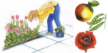 Der Gartenmonat