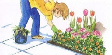 Die Gerade Gartenwochen